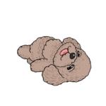 仰向けで寝ているトイプードルのイラスト