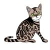 ベンガル(猫)のかわいい手書き風イラスト
