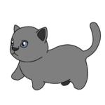 マンチカン(猫)のかわいい手書き風イラスト