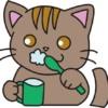 歯みがきをしている猫(こげ茶)イラスト