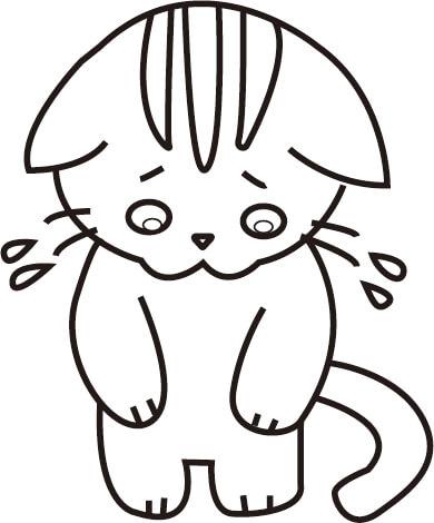 あやまっている猫のぬり絵