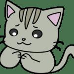 手を合わせて謝っている猫(グレー)イラスト