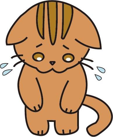 あやまっている猫(茶色)のイラスト