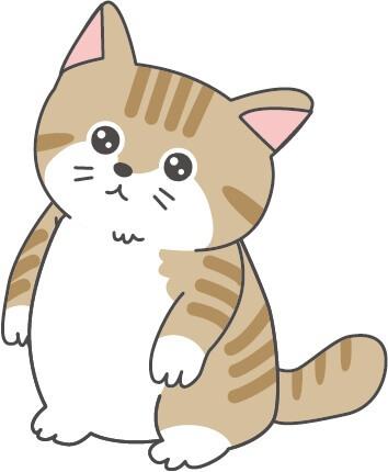 子猫(茶トラ)