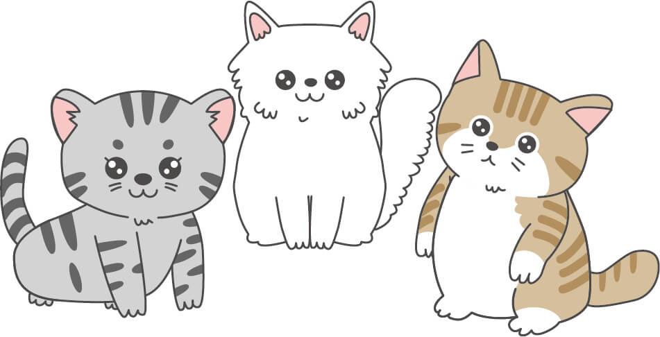 子猫(白色・茶トラ・グレー)
