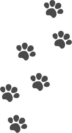 犬猫の肉球(足あと)黒色