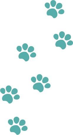 犬猫の肉球(足あと)緑