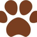 犬猫の肉球(足あと)茶色