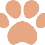 犬猫の肉球(足あと)オレンジ